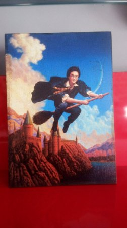 Quadro 30x20cm - Harry Potter