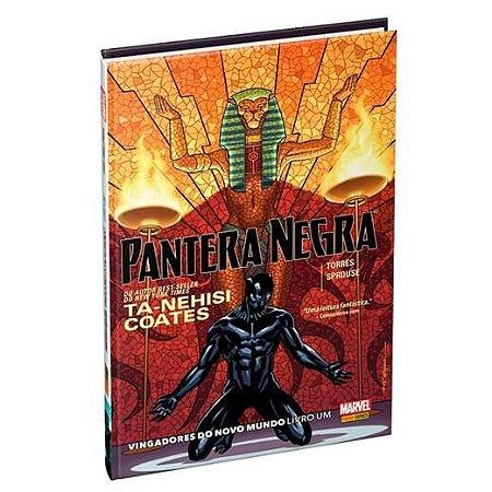 Pantera Negra: Vingadores do novo mundo