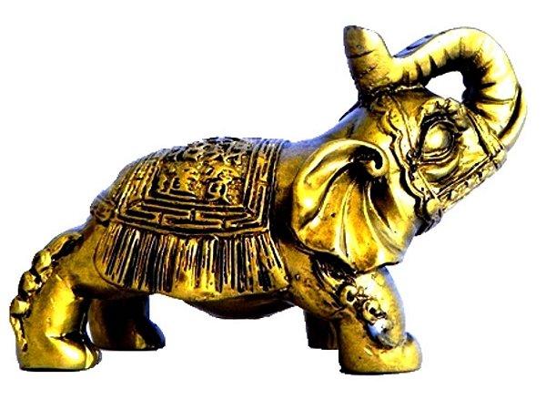 Elefante Resina Dourado