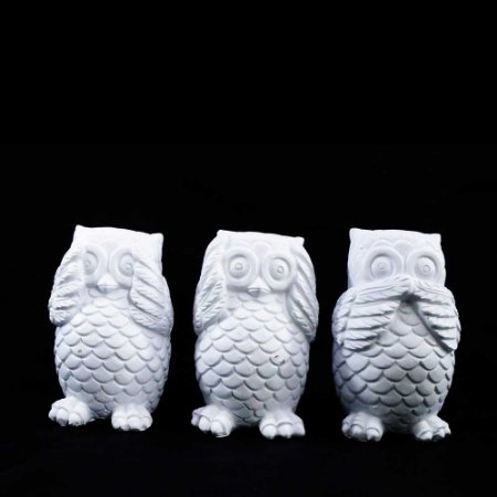 Trio de Corujas Brancas : Não ouve, não vê e não fala