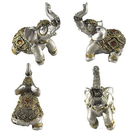 Elefante Dourado B