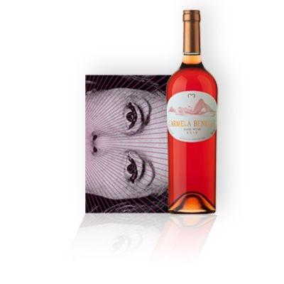 Kit livro Clarice Lispector Todos os Contos + Vinho Carmela Benegas
