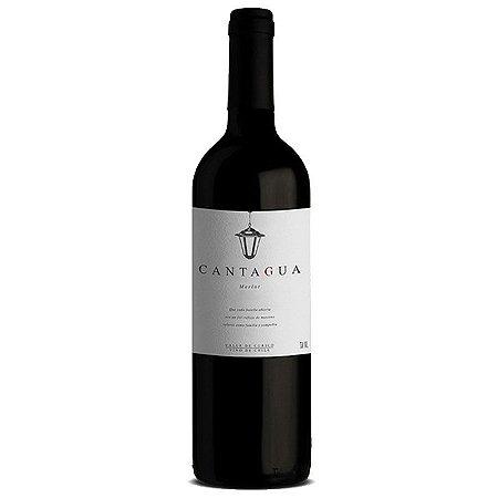 Vinho Tinto Chileno Cantagua Signature Merlot 750 ml