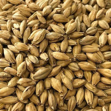 Malte Agrária PALE ALE - 100g