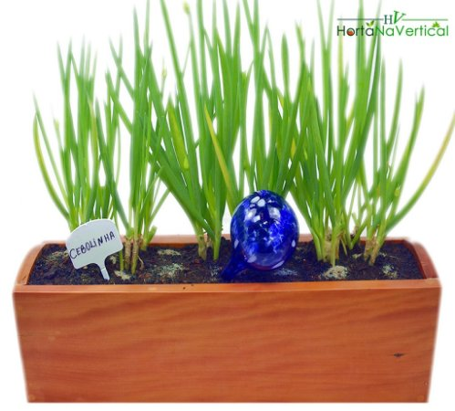 Vaso tipo Jardineira - Horta vertical (avulso)