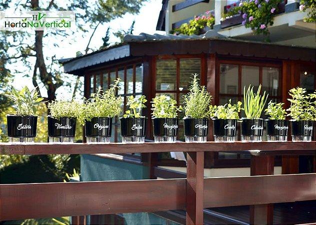 KIT - 10 Vasos Auto-Irrigáveis - Linha Gourmet PRETO - Coleção Completa!