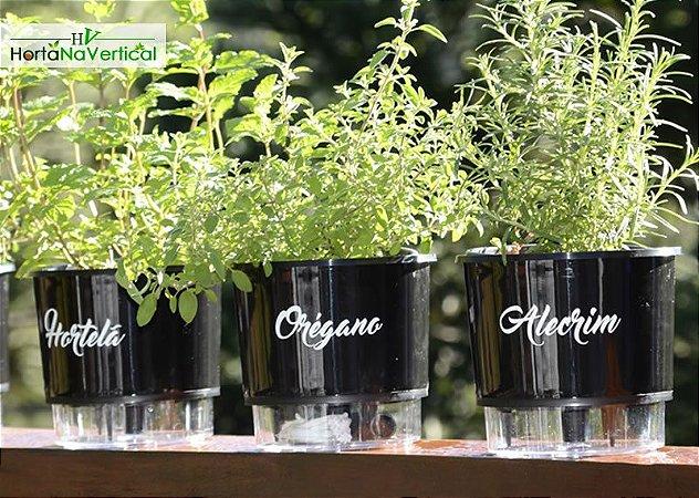 KIT - 3 Vasos Auto-Irrigáveis - Linha Gourmet PRETO - Escolha os vasos!