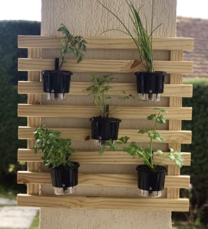 Horta Auto-Irrigável - treliça (60x60) + 5 Vasos Médios Auto Irrigáveis