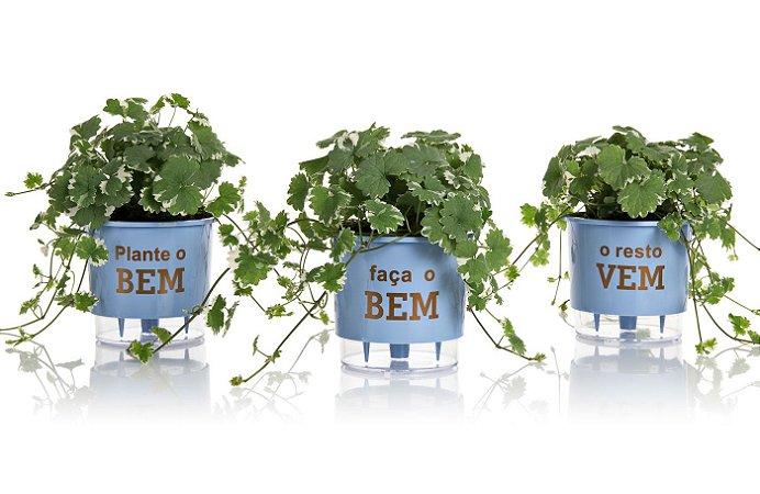Conjunto 3 Vasos Autoirrigáveis Grandes - Plante o Bem - Azul