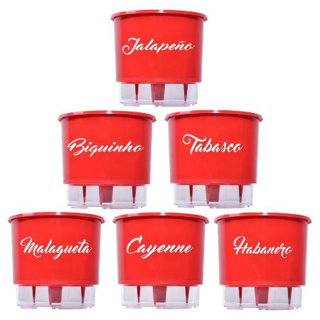 KIT - 6 Vasos Auto Irrigáveis - Pimentas - Biquinho, Malagueta, Cayenne, Jalapeño, Habanero e Tabasco