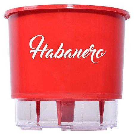 Vaso Auto Irrigável da linha pimenta - Habanero (unidade)
