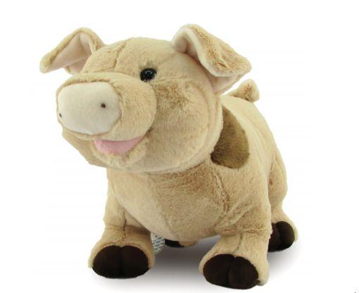 Porco Pelúcia M