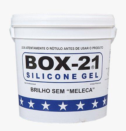 Silicone Automotivo Box 21 3,6kg