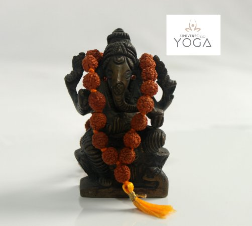Japamala Rudraksha 108 contas 7mm