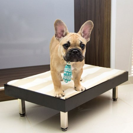 Carlu Pet House - Cama Luxury Bed Preto