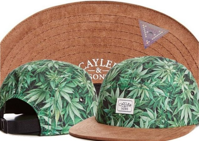 Boné 5 PANEL - Cayler & Sons WEED
