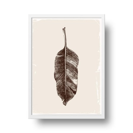 Quadro Poster Botanical - Folha Musa