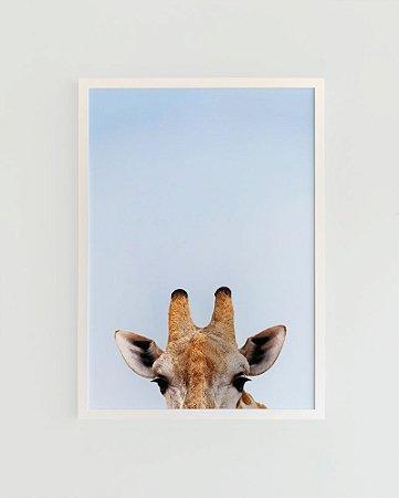 Quadro Decorativo Poster Fotografia Girafa - Animal, África, Minimalista