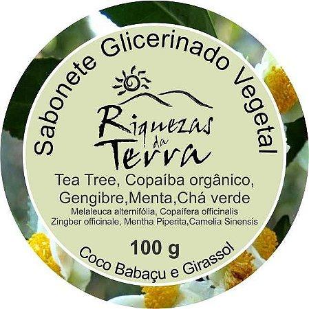 Sabonete Glicerinado Tea Tree, Copaíba orgânico, Gengibre, Menta e Chá Verde