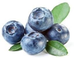 Mirtilo (blueberry)