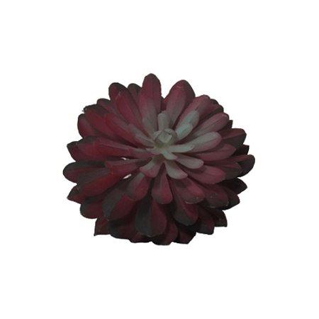 Suculenta Ensaiao Vermelha