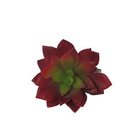 Suculenta Echeveria Vermelha