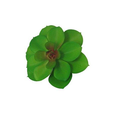 Suculenta Verde Vivo