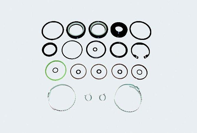 Reparo Caixa Direção Hidráulica BMW Z-3 (96 a 01) / 323 (00)