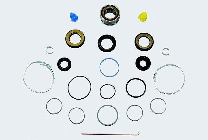 Reparo Caixa Direção Hidráulica Master (03 a 08)  (Ret. Carcaça Ext. 45 e 46 MM.)