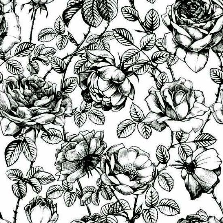Papel de Parede Adesivo Drawn Roses