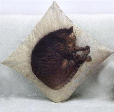 almofada gato 3D