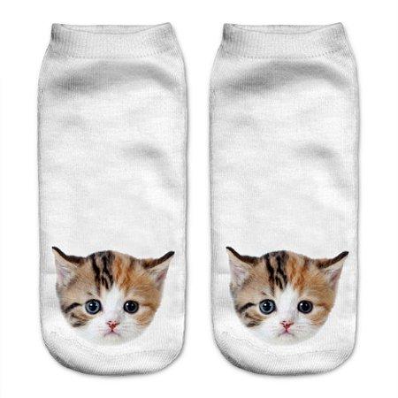 meia gato