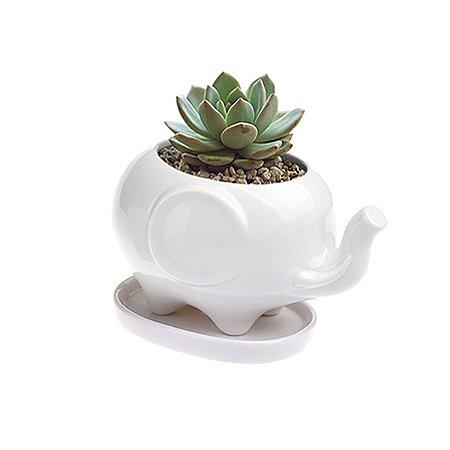 Mini Vasos Bichinhos - Elefante - 8,5 x 4,5 cm - 1 Unidade