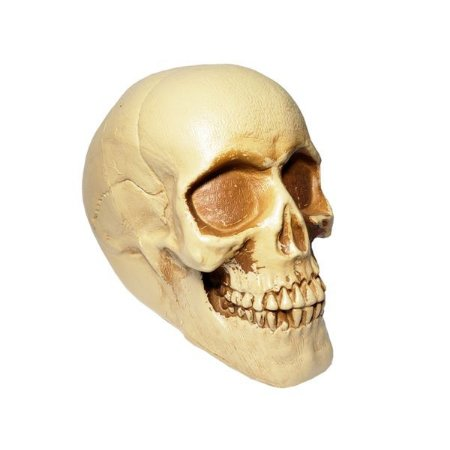 Caveira Jack Decorativa Halloween - 1 Unidade
