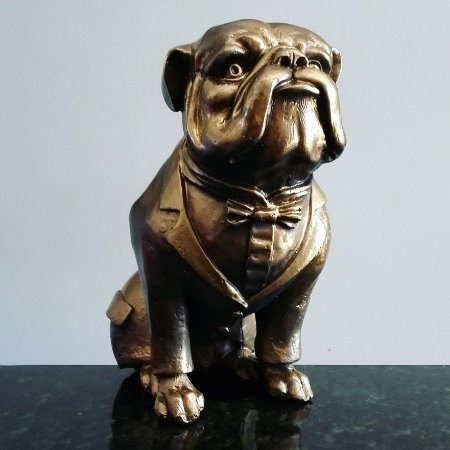 Buldogue Inglês com Gravata e Smoking (Bulldog)