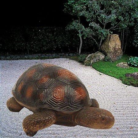 Escultura Jabuti - Ambientes Exteriores