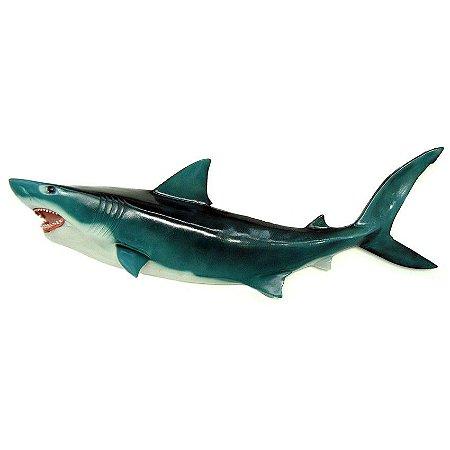 Peixe Tubarão de Parede
