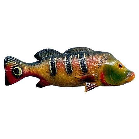 Peixe Tucunaré de Parede