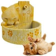 Fonte Gato Amarela