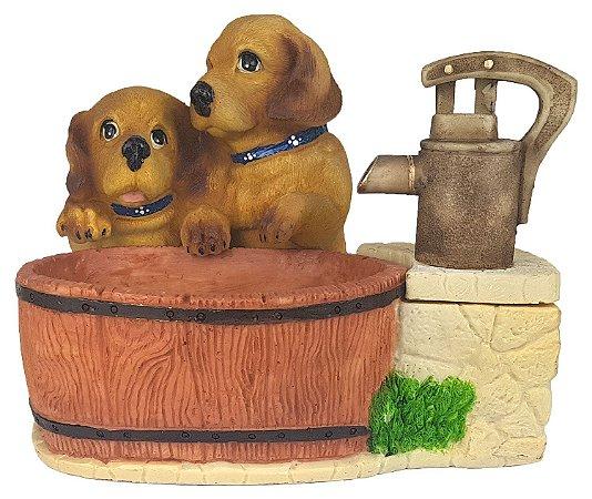 Fonte Dogs Advance