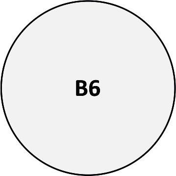 B06 - Pin