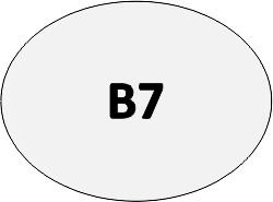 B07 - Pin