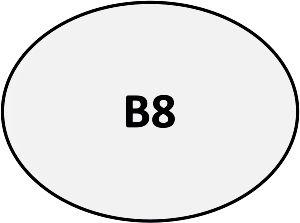 B08 - Pin