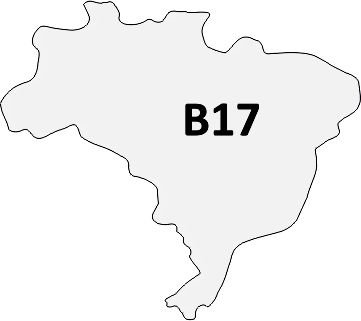 B17 - Pin