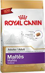 Ração Royal Canin Para Cães Adultos da Raça Maltes