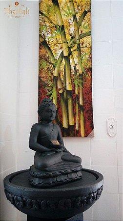 Fonte Buda com Coluna