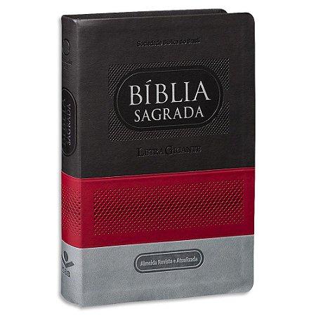 Bíblia Letra Gigante RA capa colorida