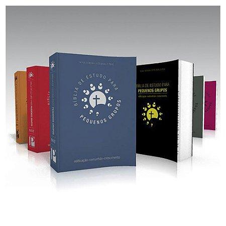 Bíblia de Estudo para Pequenos Grupos versão NVI