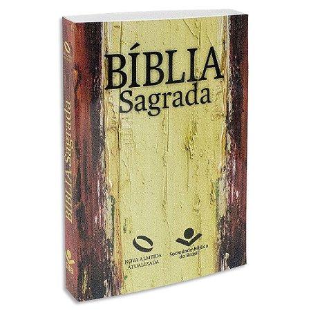 Bíblia Nova Almeida Atualizada capa Ilustrada