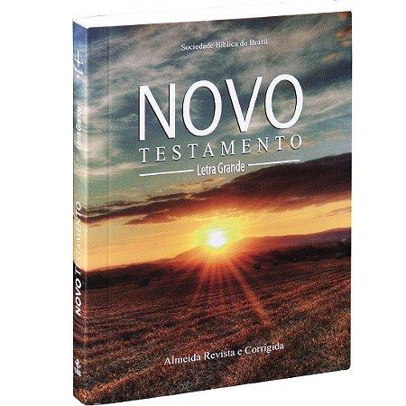 Bíblia Novo Testamento Letra Grande Caixa com 20 unidades
